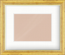 35mm Gold Reverse Picture Frame